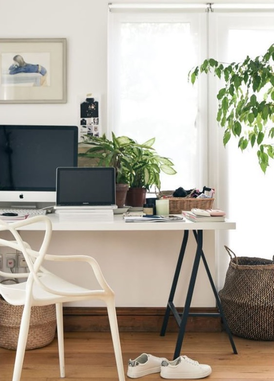 clementine-daily-simple-shui-feng-shui-for-office