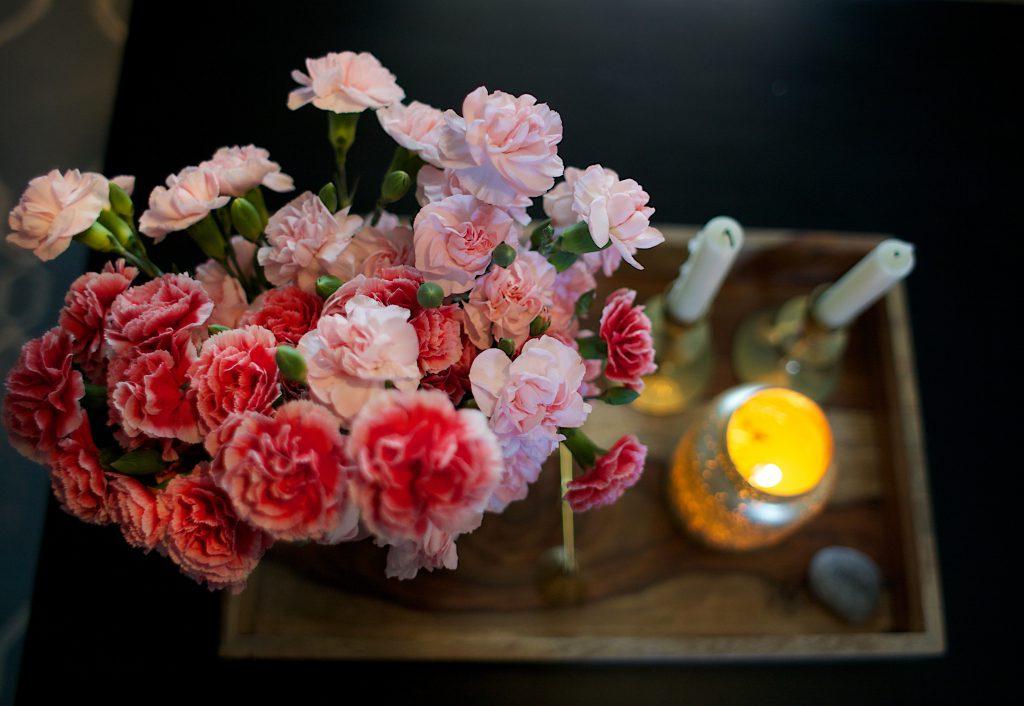 carnations-f